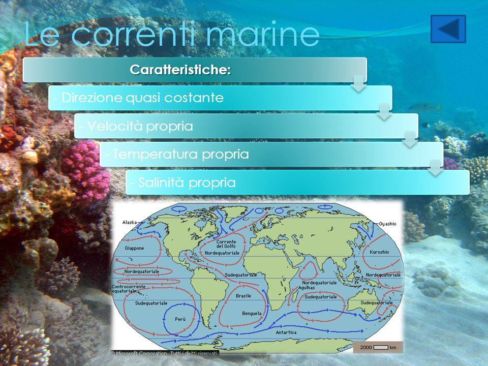 Le correnti marine Caratteristiche: - Direzione quasi costante- Velocità propria- Temperatura propria- Salinità propria