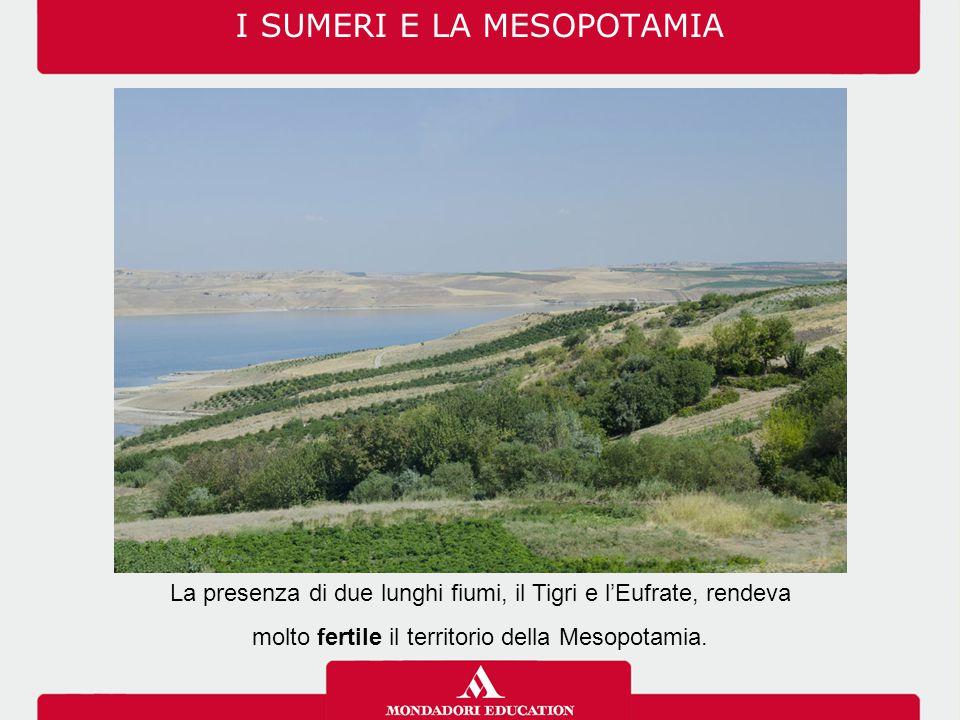 La presenza di due lunghi fiumi, il Tigri e l'Eufrate, rendeva molto fertile il territorio della Mesopotamia.