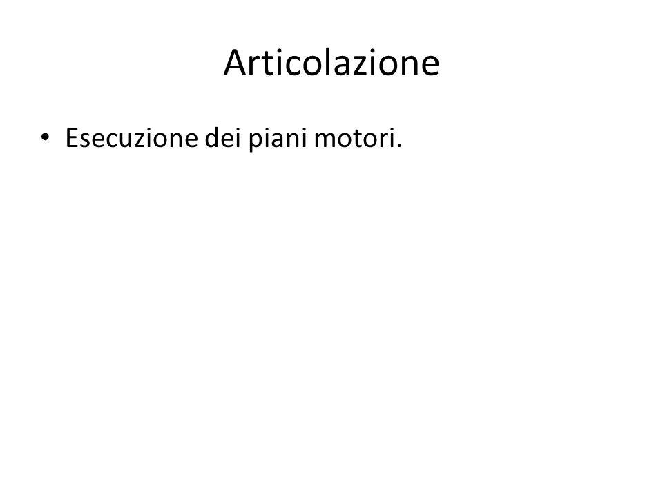 Esecuzione dei piani motori.