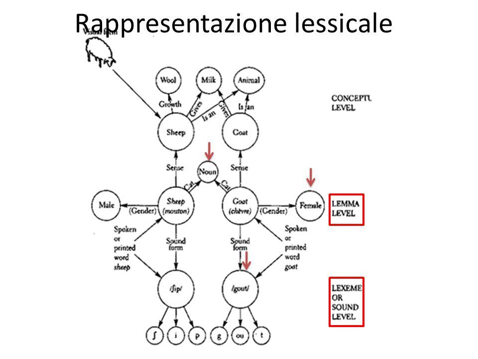 Rappresentazione lessicale: Lemma Lemma: modalità generale.