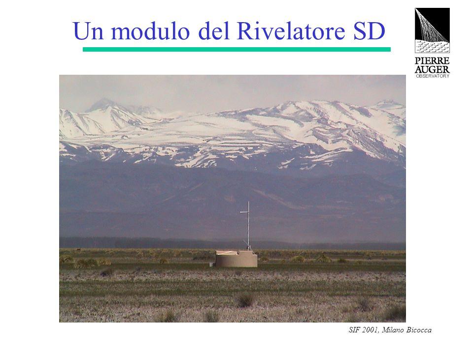 SIF 2001, Milano Bicocca Un modulo del Rivelatore SD