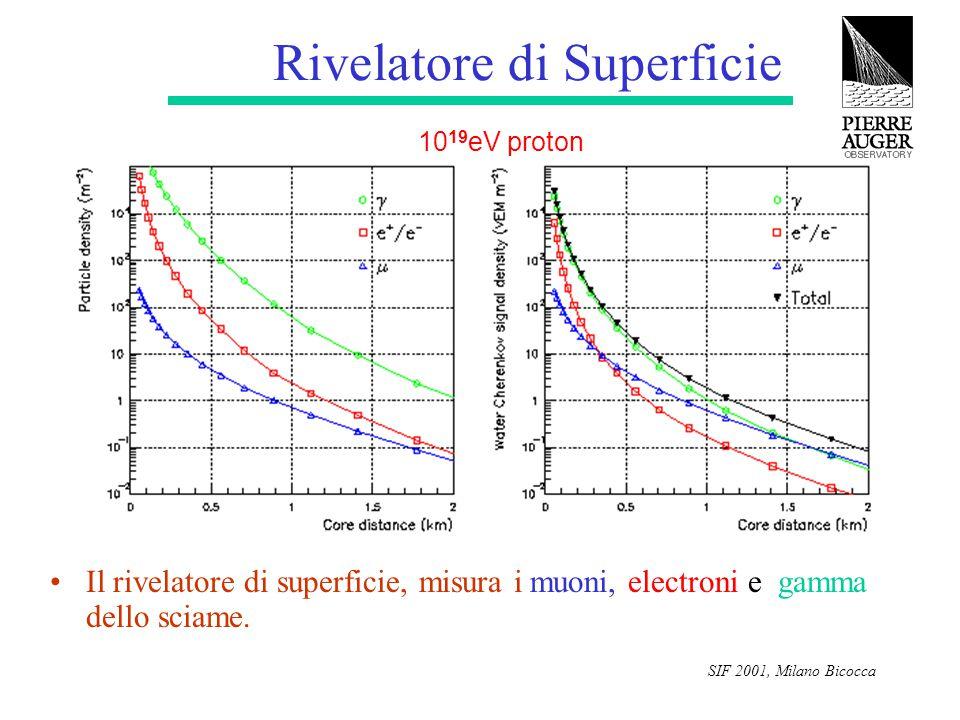 SIF 2001, Milano Bicocca Rivelatore di Superficie Il rivelatore di superficie, misura i muoni, electroni e gamma dello sciame. 10 19 eV proton