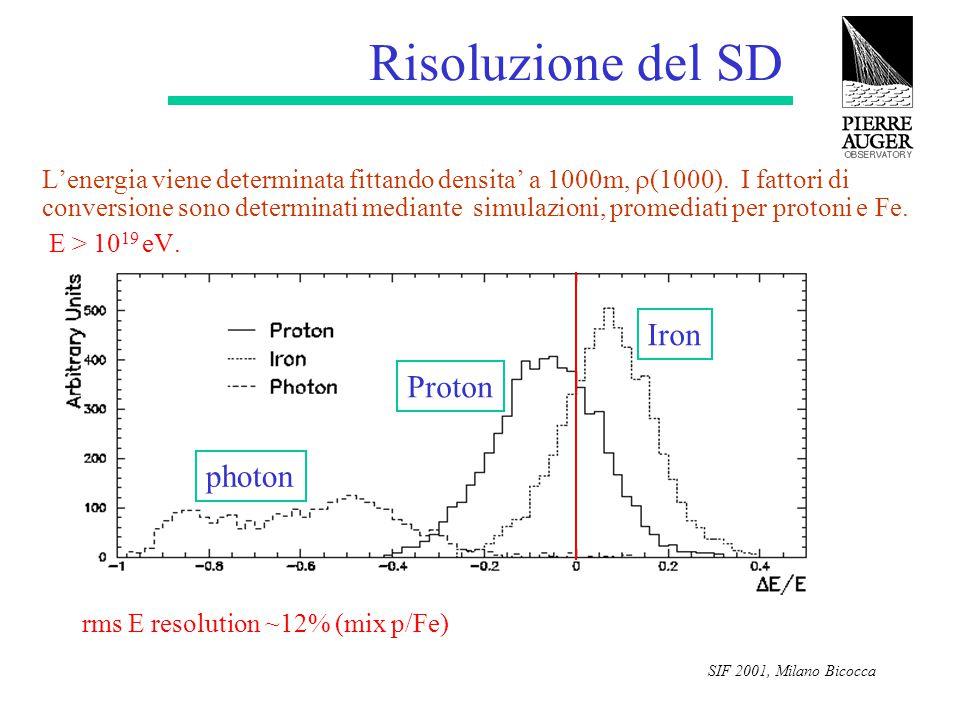 SIF 2001, Milano Bicocca Risoluzione del SD L'energia viene determinata fittando densita' a 1000m,  (1000). I fattori di conversione sono determinati