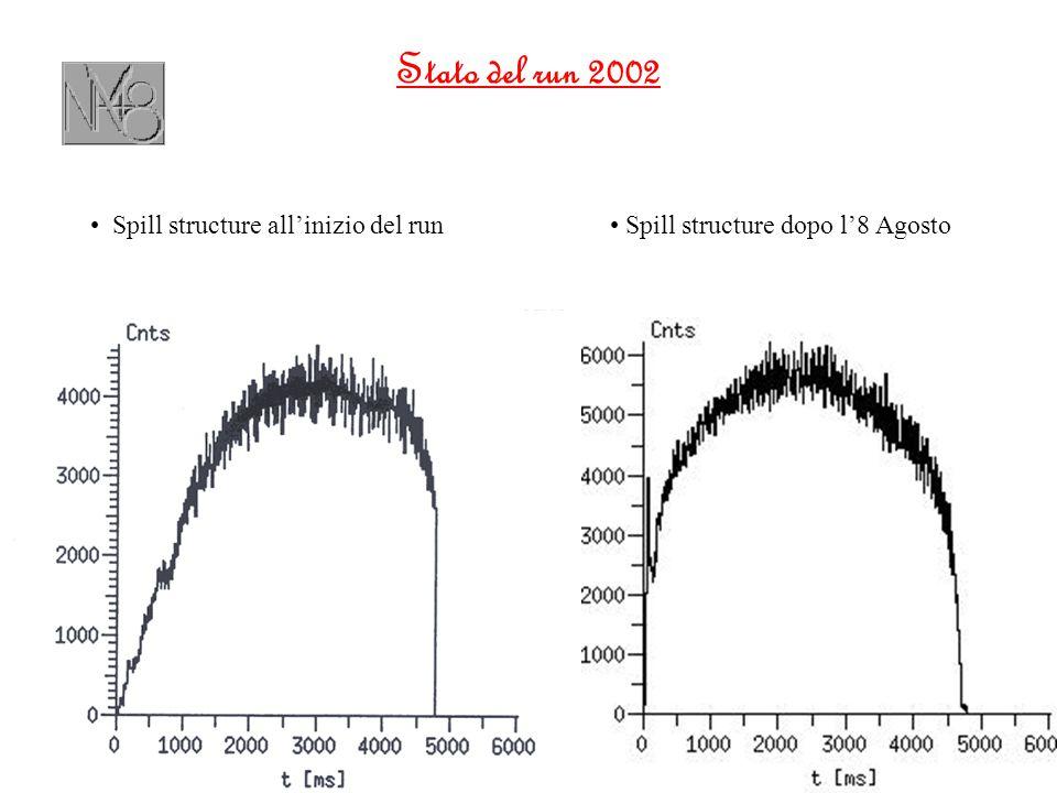 Stato del run 2002 Spill structure all'inizio del run Spill structure dopo l'8 Agosto