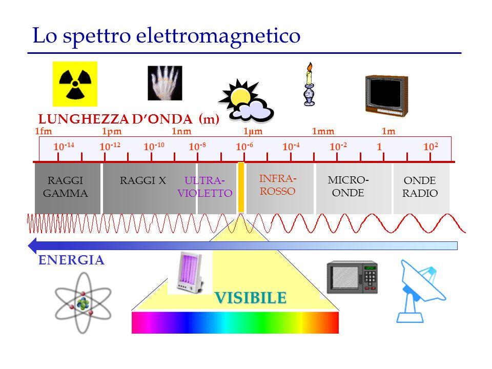 1fm 1pm 1nm 1 μ m 1mm 1m RAGGI GAMMA RAGGI XULTRA- VIOLETTO INFRA- ROSSO MICRO- ONDE RADIO Lo spettro elettromagnetico LUNGHEZZA D'ONDA (m) VISIBILE 1