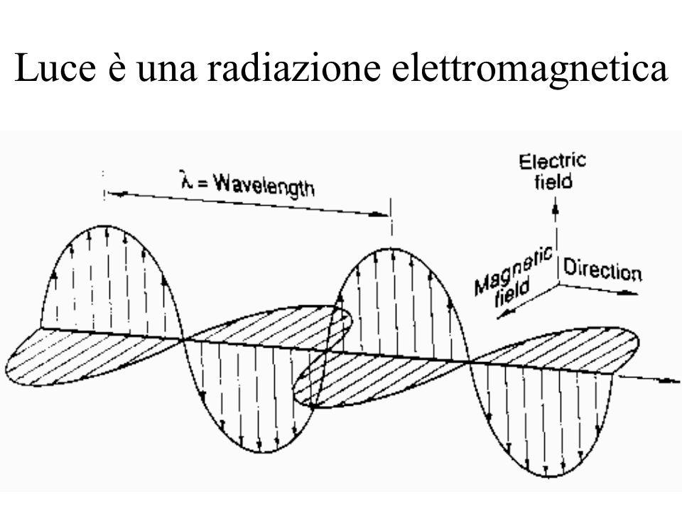 1fm 1pm 1nm 1 μ m 1mm 1m RAGGI GAMMA RAGGI XULTRA- VIOLETTO INFRA- ROSSO MICRO- ONDE RADIO Lo spettro elettromagnetico LUNGHEZZA D'ONDA (m) VISIBILE 10 -14 10 -12 10 -10 10 -8 10 -6 10 -4 10 -2 1 10 2 ENERGIA
