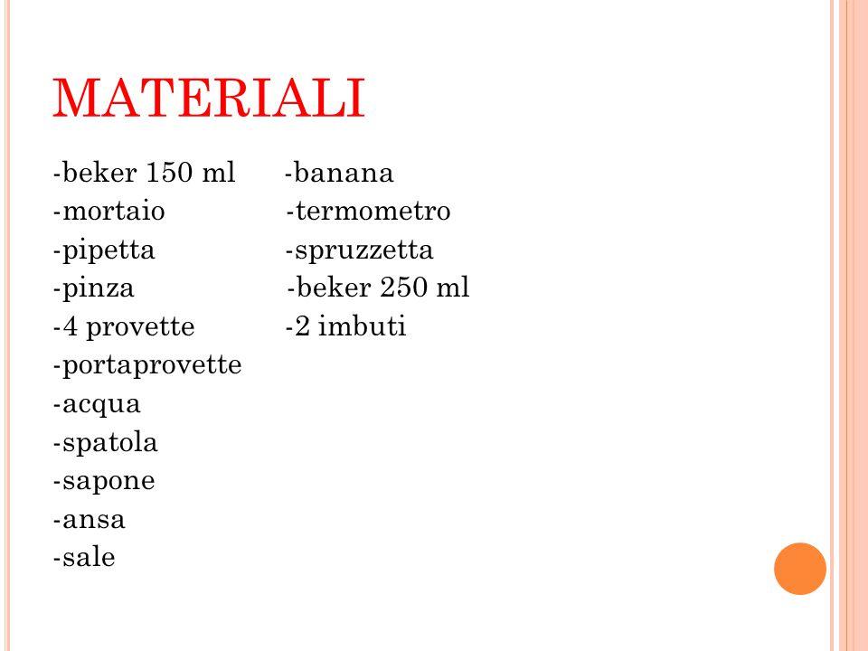 MATERIALI -beker 150 ml -banana -mortaio -termometro -pipetta -spruzzetta -pinza -beker 250 ml -4 provette -2 imbuti -portaprovette -acqua -spatola -s