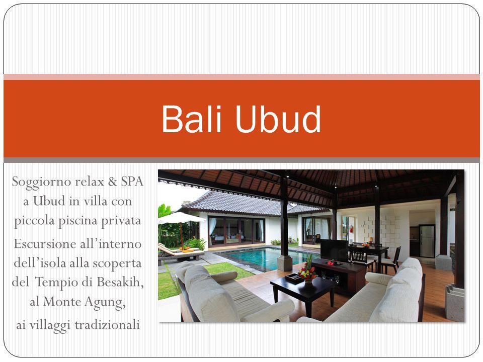 Soggiorno relax & SPA a Ubud in villa con piccola piscina privata Escursione all'interno dell'isola alla scoperta del Tempio di Besakih, al Monte Agun