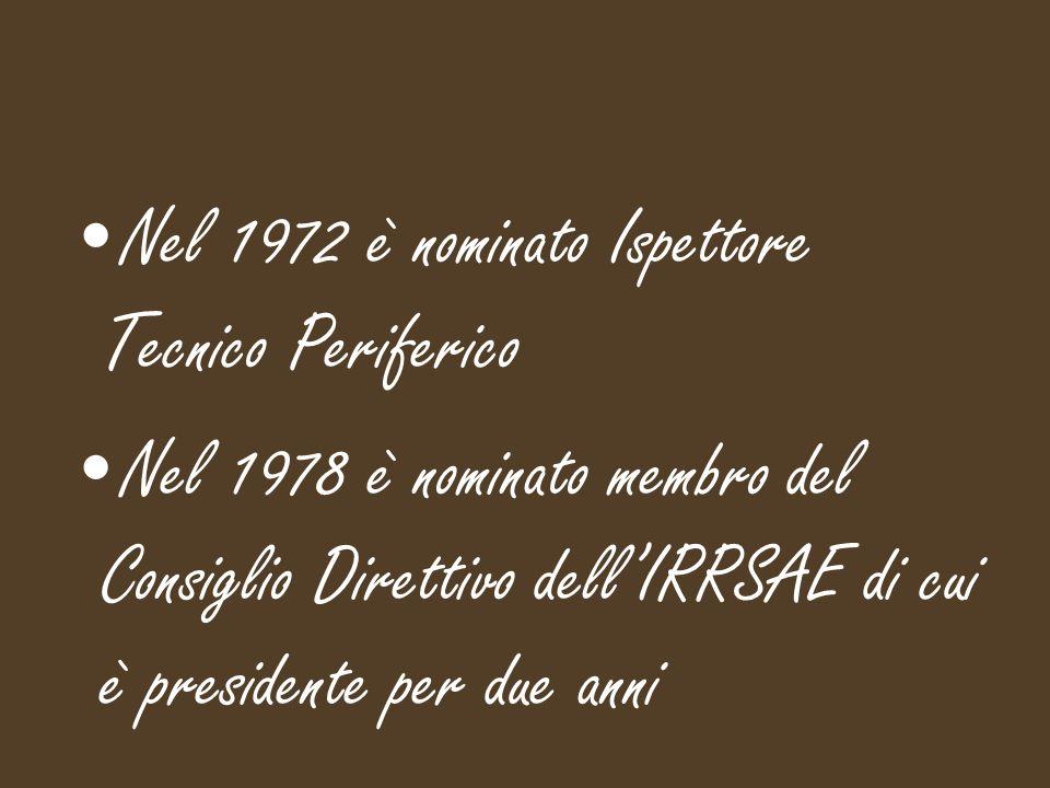 Nel 1972 è nominato Ispettore Tecnico Periferico Nel 1978 è nominato membro del Consiglio Direttivo dell'IRRSAE di cui è presidente per due anni