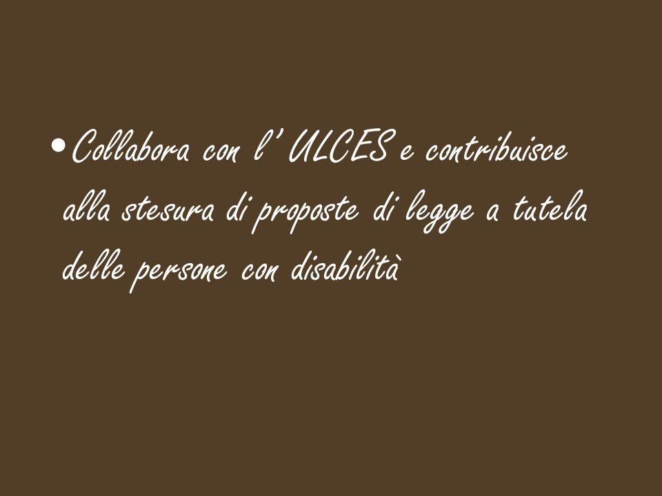 Collabora con l' ULCES e contribuisce alla stesura di proposte di legge a tutela delle persone con disabilità