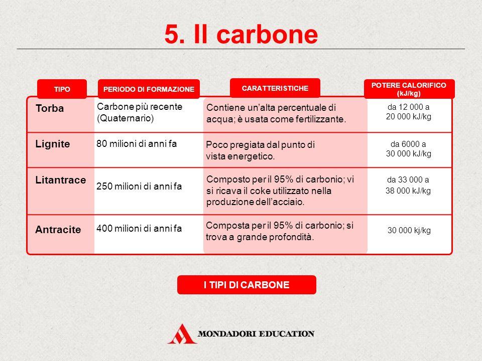 5. Il carbone LA FORMAZIONE
