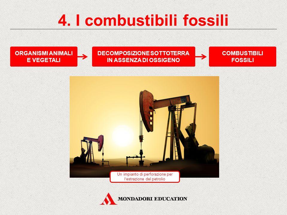 Identifica, tra quelle elencate, le fonti di energia rinnovabili.