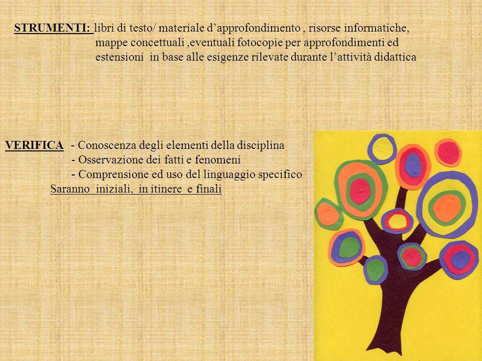 VERIFICA - Conoscenza degli elementi della disciplina - Osservazione dei fatti e fenomeni - Comprensione ed uso del linguaggio specifico Saranno inizi