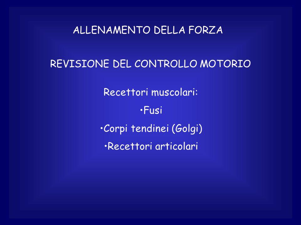 ALLENAMENTO DELLA FORZA REVISIONE DEL CONTROLLO MOTORIO Recettori muscolari: Fusi Corpi tendinei (Golgi) Recettori articolari