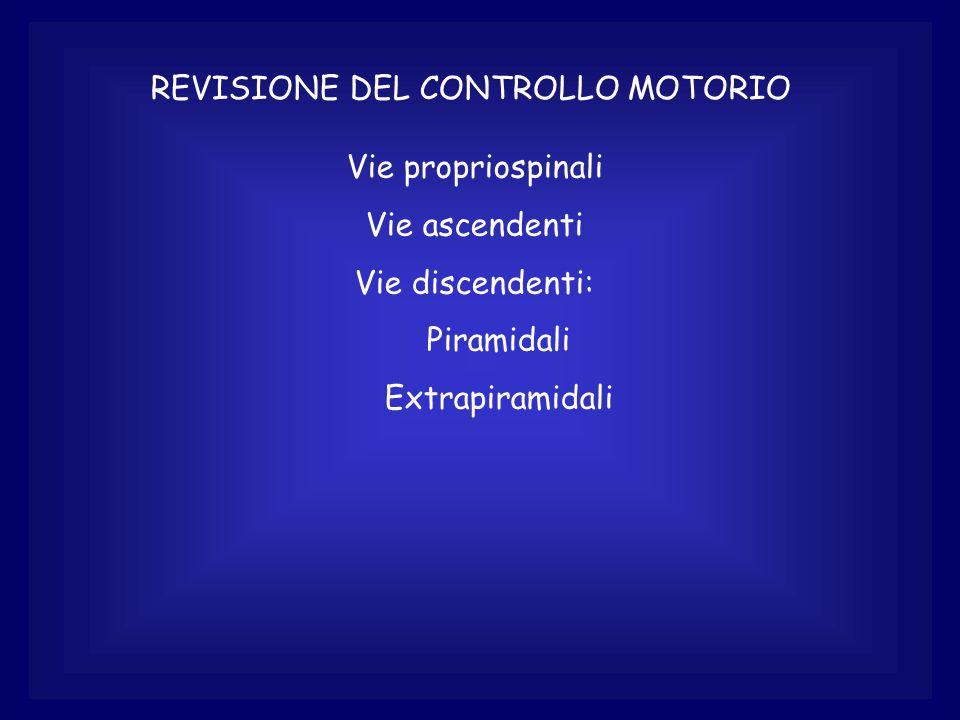 REVISIONE DEL CONTROLLO MOTORIO Vie propriospinali Vie ascendenti Vie discendenti: Piramidali Extrapiramidali