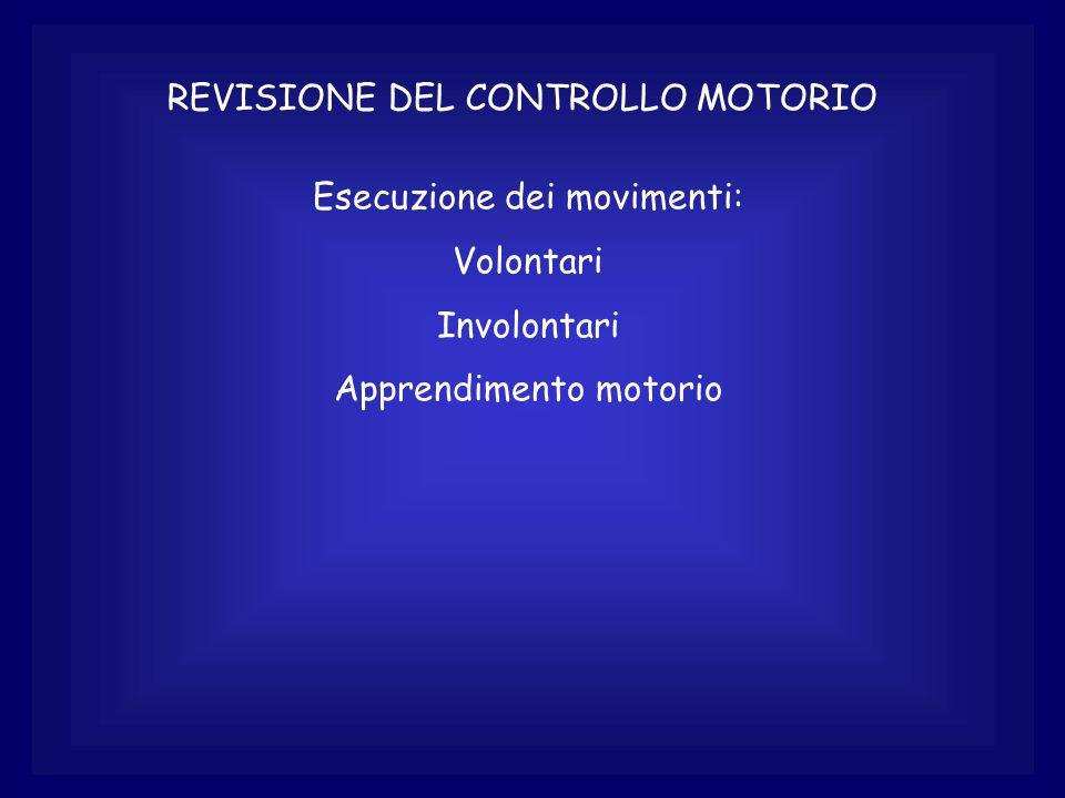 REVISIONE DEL CONTROLLO MOTORIO Esecuzione dei movimenti: Volontari Involontari Apprendimento motorio