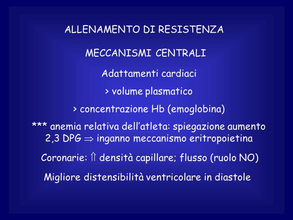 ALLENAMENTO DI RESISTENZA MECCANISMI CENTRALI Adattamenti cardiaci > volume plasmatico > concentrazione Hb (emoglobina) *** anemia relativa dell'atleta: spiegazione aumento 2,3 DPG  inganno meccanismo eritropoietina Coronarie:  densità capillare; flusso (ruolo NO) Migliore distensibilità ventricolare in diastole