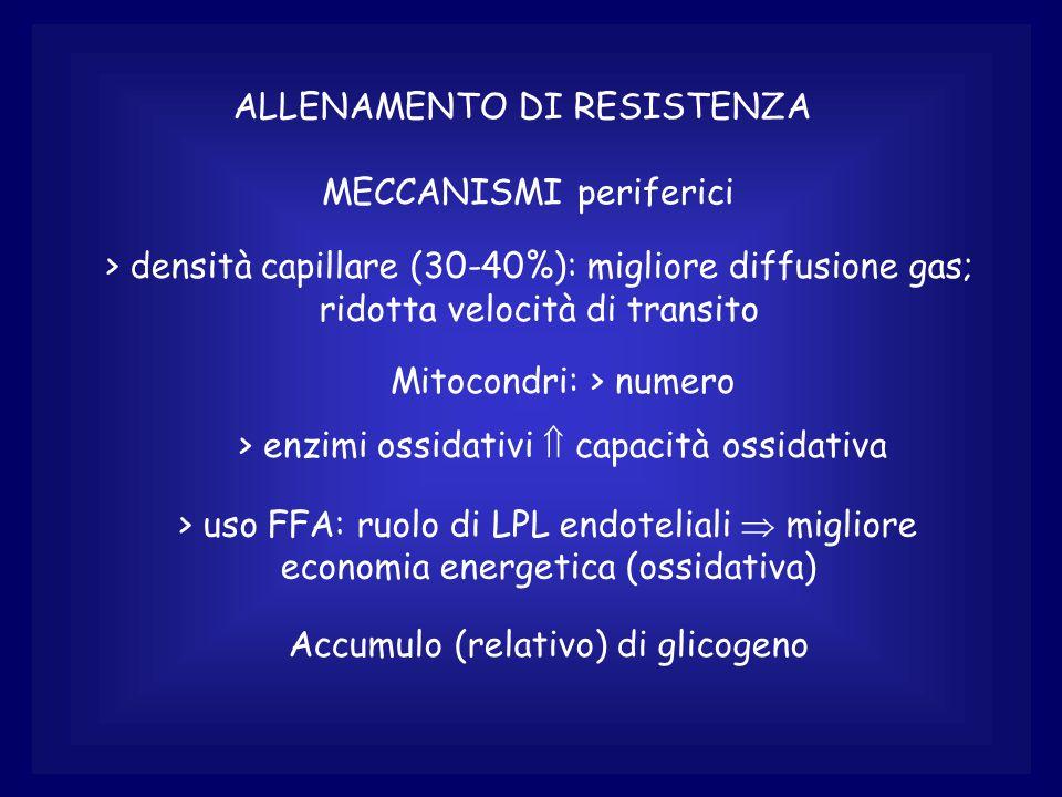 ALLENAMENTO DI RESISTENZA MECCANISMI periferici > densità capillare (30-40%): migliore diffusione gas; ridotta velocità di transito Mitocondri: > numero > enzimi ossidativi  capacità ossidativa > uso FFA: ruolo di LPL endoteliali  migliore economia energetica (ossidativa) Accumulo (relativo) di glicogeno