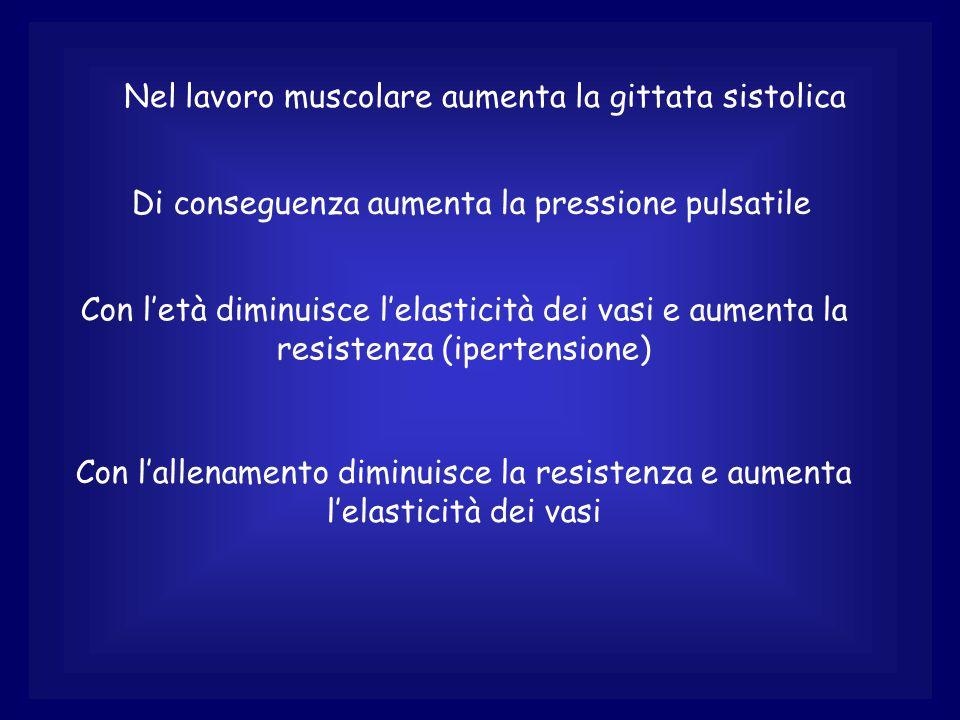 Nel lavoro muscolare aumenta la gittata sistolica Di conseguenza aumenta la pressione pulsatile Con l'età diminuisce l'elasticità dei vasi e aumenta la resistenza (ipertensione) Con l'allenamento diminuisce la resistenza e aumenta l'elasticità dei vasi