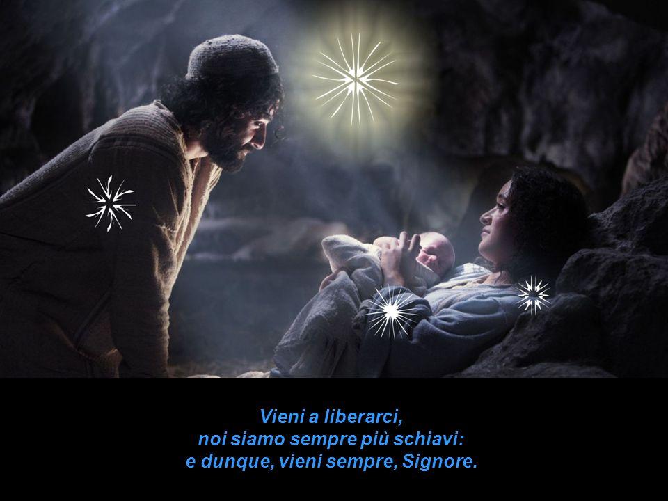 Vieni a consolarci, noi siamo sempre più tristi: e dunque, vieni sempre, Signore.