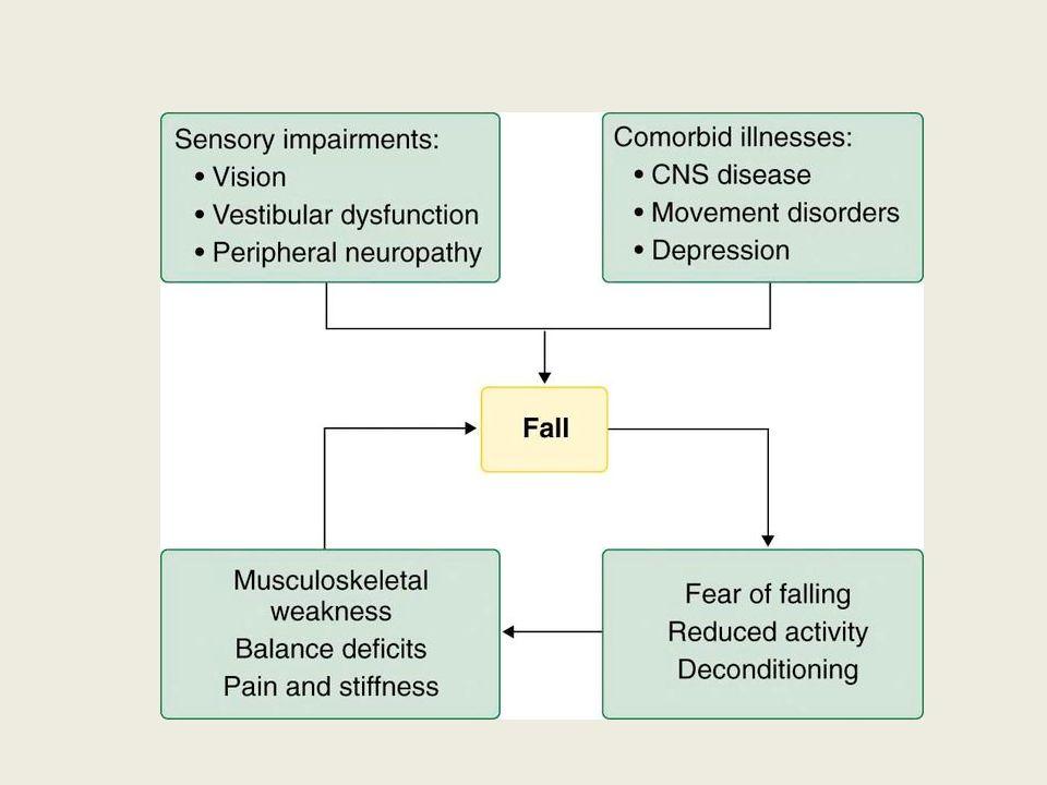 L'invecchiamento è normalmente associato a modificazioni della composizione corporea.