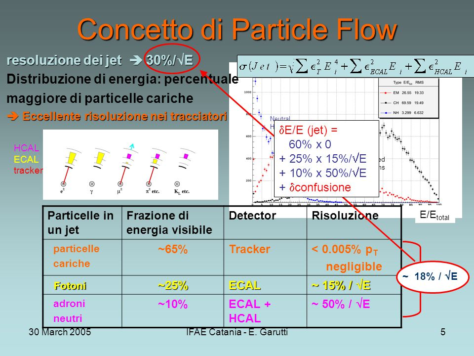 30 March 2005IFAE Catania - E. Garutti5 EM Neutral Hadrons Charged Hadrons Concetto di Particle Flow resoluzione dei jet  30%/  E Distribuzione di e