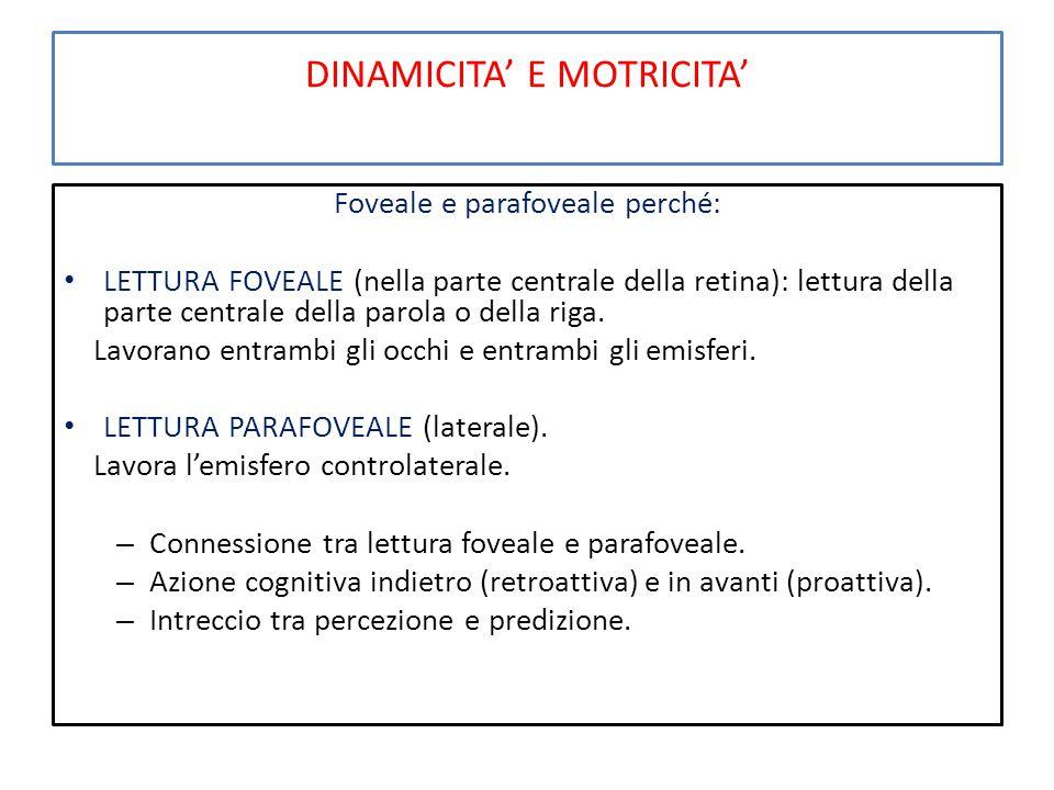 DINAMICITA' E MOTRICITA' Foveale e parafoveale perché: LETTURA FOVEALE (nella parte centrale della retina): lettura della parte centrale della parola o della riga.