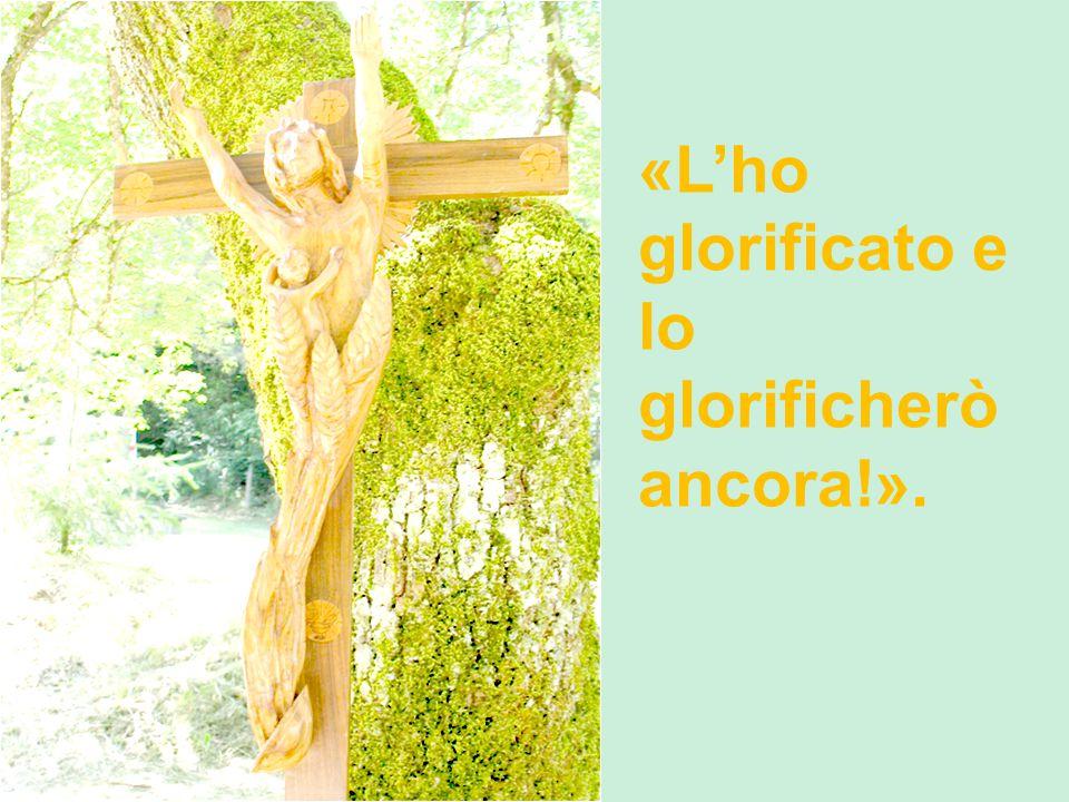«L'ho glorificato e lo glorificherò ancora!».