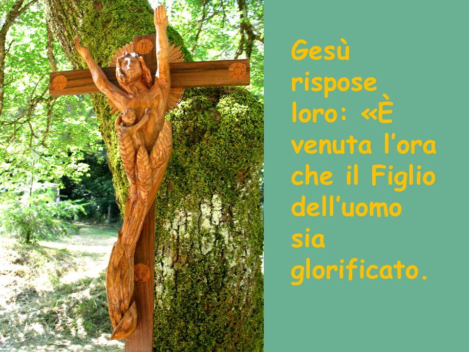 Gesù rispose loro: «È venuta l'ora che il Figlio dell'uomo sia glorificato.