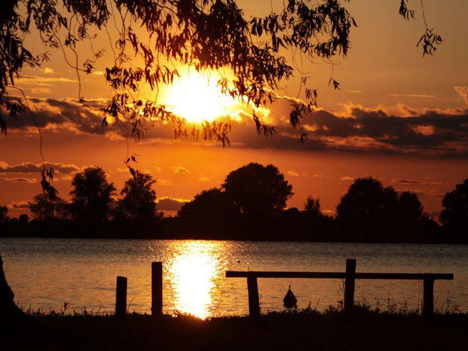 Guarda al di là della notte, osserva quell'alba splendente lontano oltre l'ombra dei tigli un Amore sorride radioso.