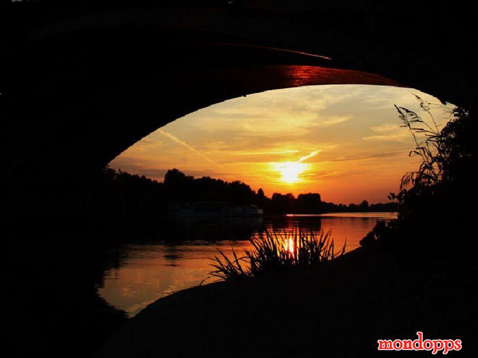 Distante oltre il sole cocente le mani tremanti e accoglienti vacilla una lacrima al ciglio nell'attesa di nuovi orizzonti.