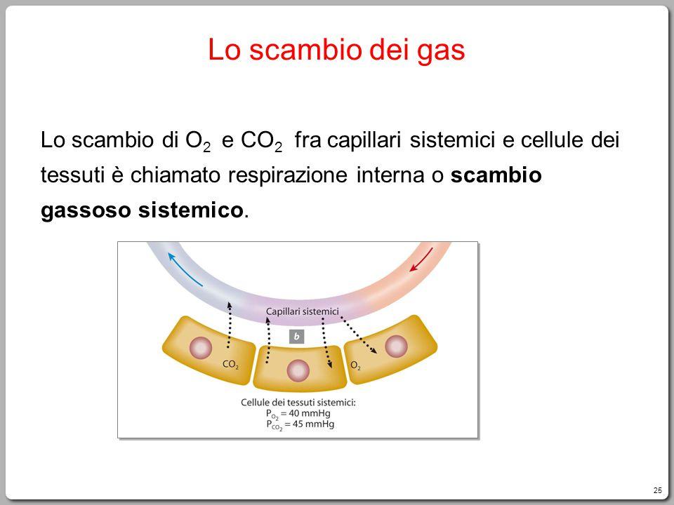 25 Lo scambio dei gas Lo scambio di O 2 e CO 2 fra capillari sistemici e cellule dei tessuti è chiamato respirazione interna o scambio gassoso sistemico.
