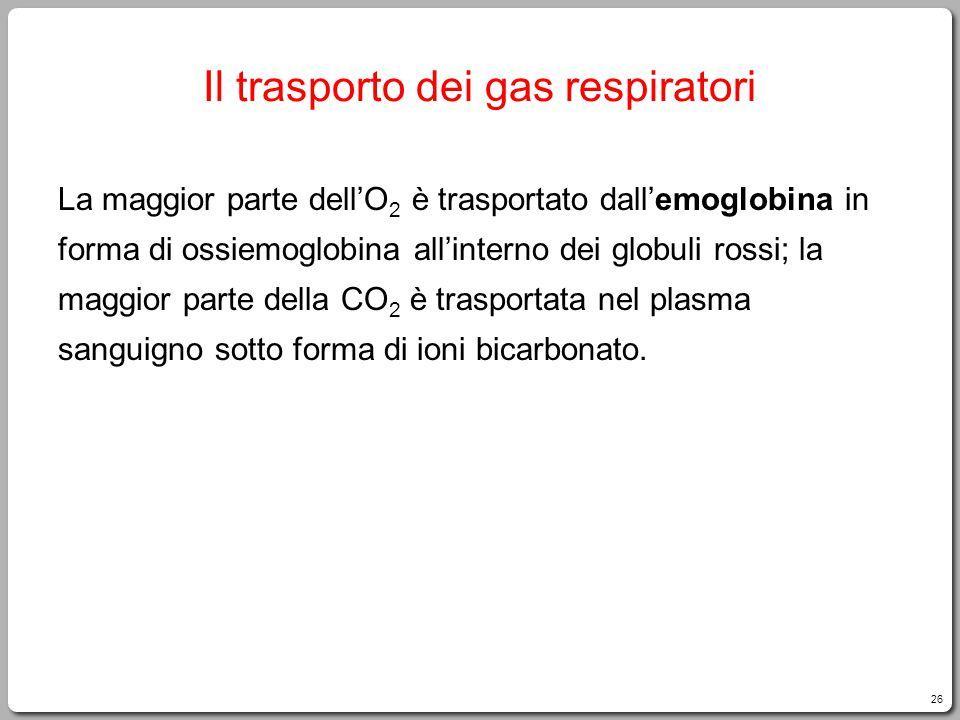 26 Il trasporto dei gas respiratori La maggior parte dell'O 2 è trasportato dall'emoglobina in forma di ossiemoglobina all'interno dei globuli rossi; la maggior parte della CO 2 è trasportata nel plasma sanguigno sotto forma di ioni bicarbonato.