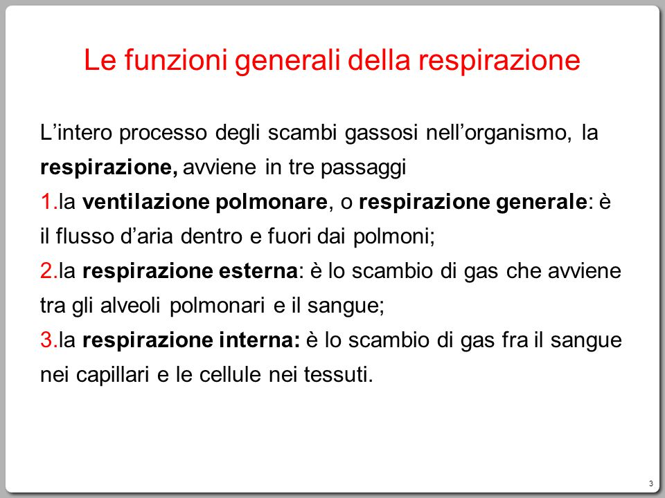 3 Le funzioni generali della respirazione L'intero processo degli scambi gassosi nell'organismo, la respirazione, avviene in tre passaggi 1.la ventila