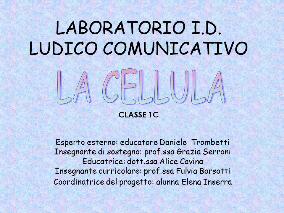 LABORATORIO I.D. LUDICO COMUNICATIVO CLASSE 1C Esperto esterno: educatore Daniele Trombetti Insegnante di sostegno: prof.ssa Grazia Serroni Educatrice