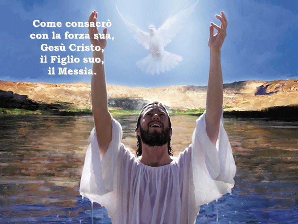Conoscete voi l'opera di Dio, quello che ha fatto in mezzo a noi.