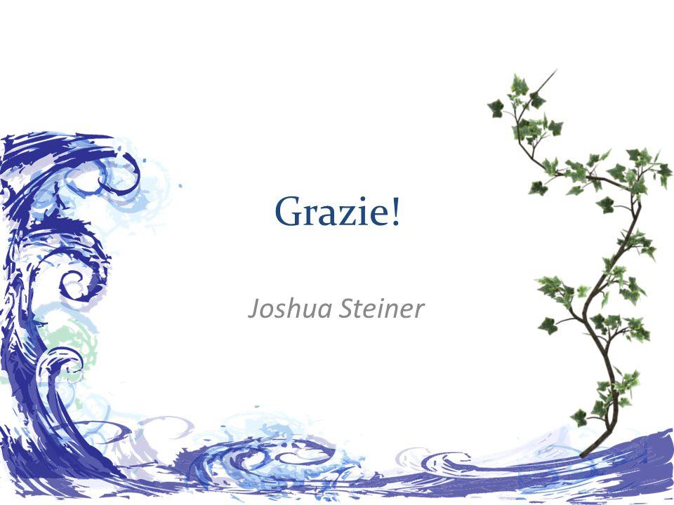 Grazie! Joshua Steiner