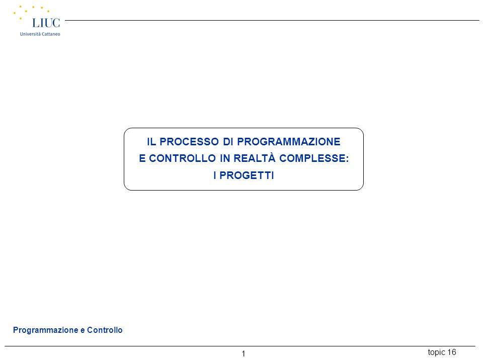 topic 16 1 Programmazione e Controllo IL PROCESSO DI PROGRAMMAZIONE E CONTROLLO IN REALTÀ COMPLESSE: I PROGETTI