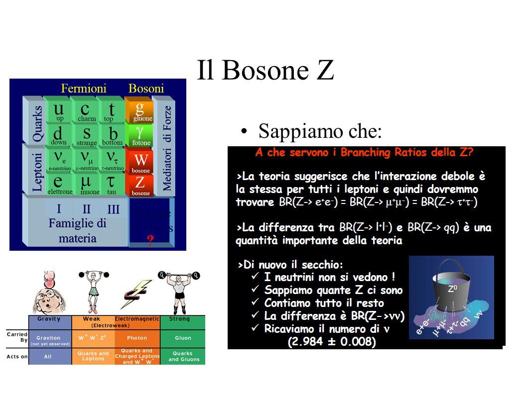 Il Bosone Z Sappiamo che: