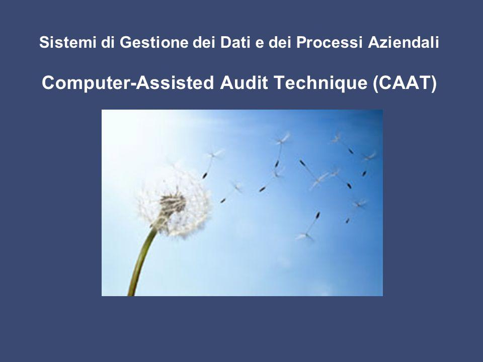 Sistemi di Gestione dei Dati e dei Processi Aziendali Computer-Assisted Audit Technique (CAAT)