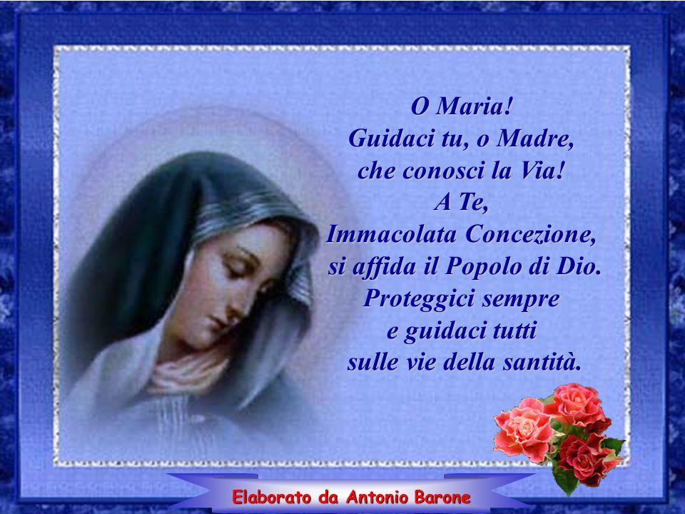 O Maria! Guidaci tu, o Madre, che conosci la Via! A Te, Immacolata Concezione, si affida il Popolo di Dio. Proteggici sempre e guidaci tutti sulle vie