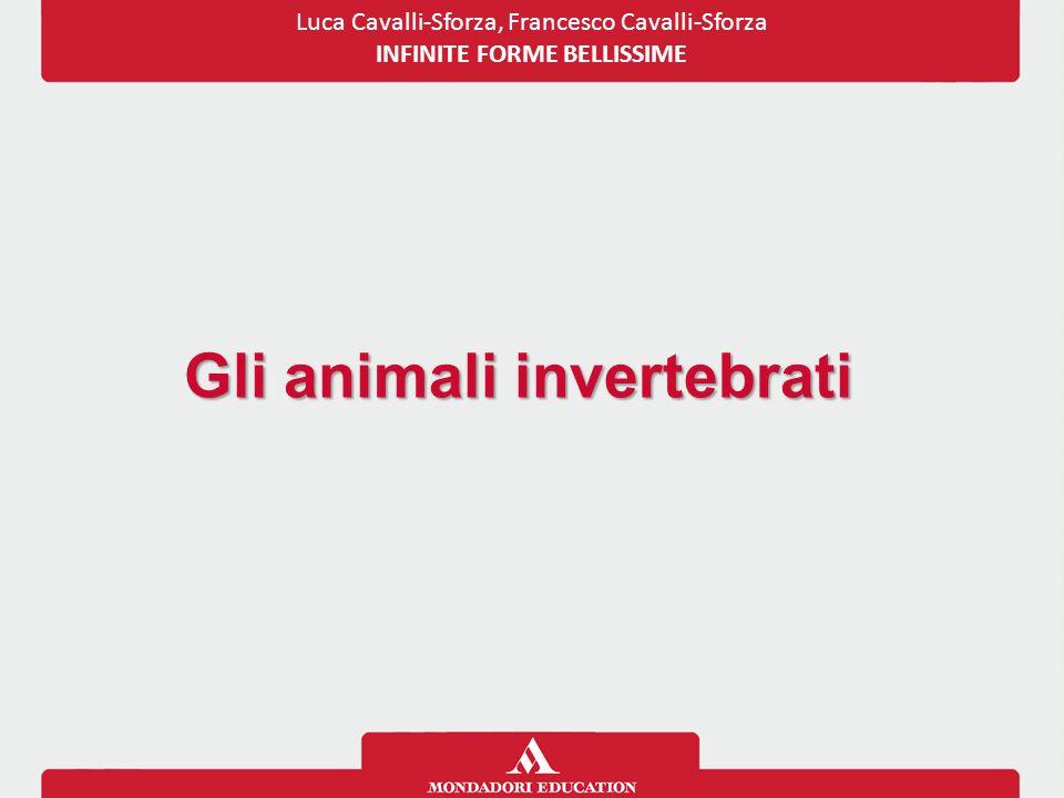 Gli animali invertebrati Luca Cavalli-Sforza, Francesco Cavalli-Sforza INFINITE FORME BELLISSIME