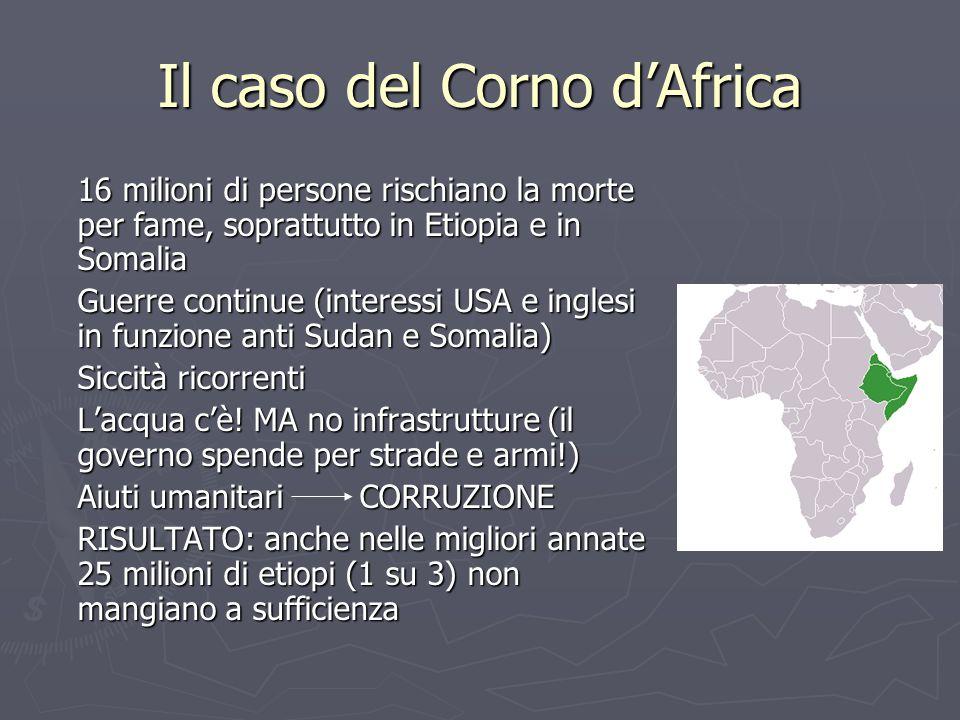 16 milioni di persone rischiano la morte per fame, soprattutto in Etiopia e in Somalia Guerre continue (interessi USA e inglesi in funzione anti Sudan e Somalia) Siccità ricorrenti L'acqua c'è.