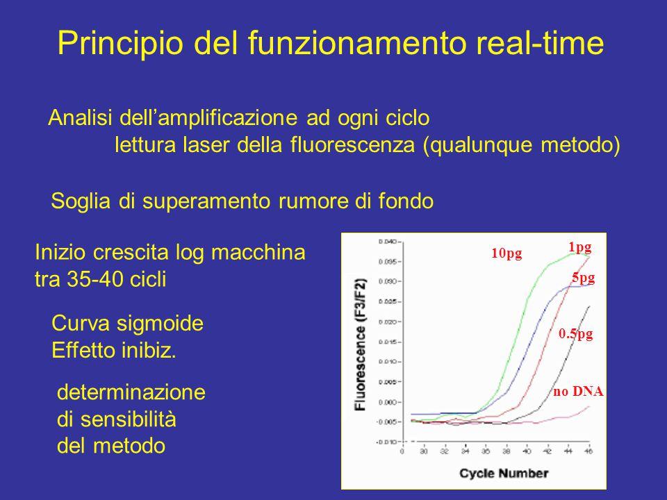 Principio del funzionamento real-time Analisi dell'amplificazione ad ogni ciclo lettura laser della fluorescenza (qualunque metodo) Soglia di superame