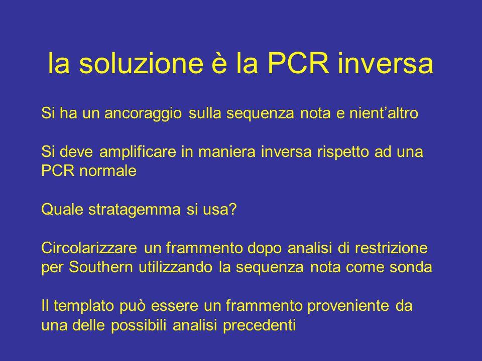 la soluzione è la PCR inversa Si ha un ancoraggio sulla sequenza nota e nient'altro Si deve amplificare in maniera inversa rispetto ad una PCR normale Quale stratagemma si usa.