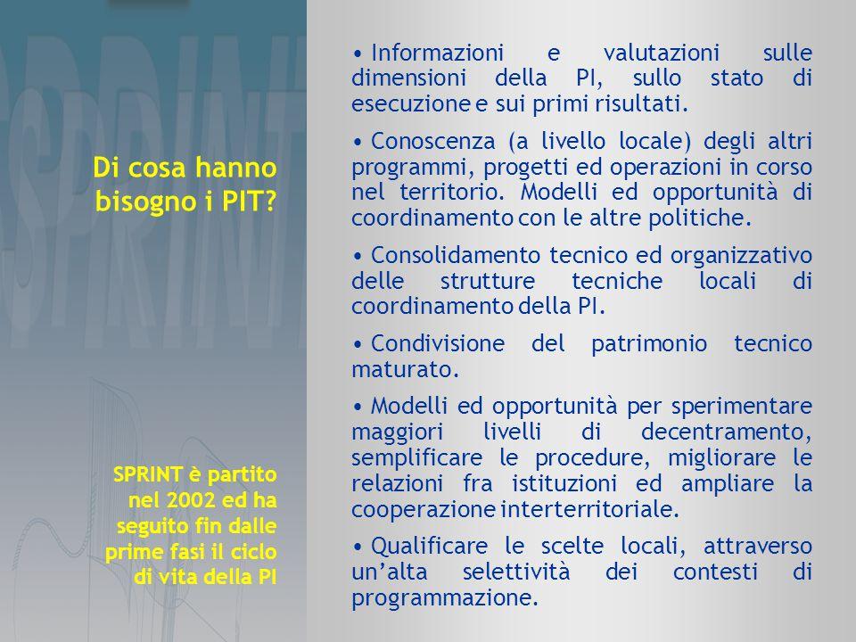 Informazioni e valutazioni sulle dimensioni della PI, sullo stato di esecuzione e sui primi risultati.