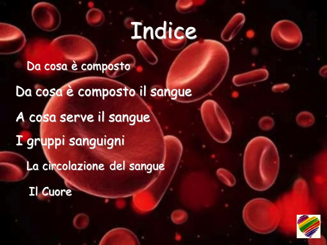 Indice Da cosa è composto il sangue Da cosa è composto il sangue A cosa serve il sangue A cosa serve il sangue I gruppi sanguigni I gruppi sanguigni La circolazione del sangue La circolazione del sangue Il Cuore Il Cuore Da cosa è composto Da cosa è composto