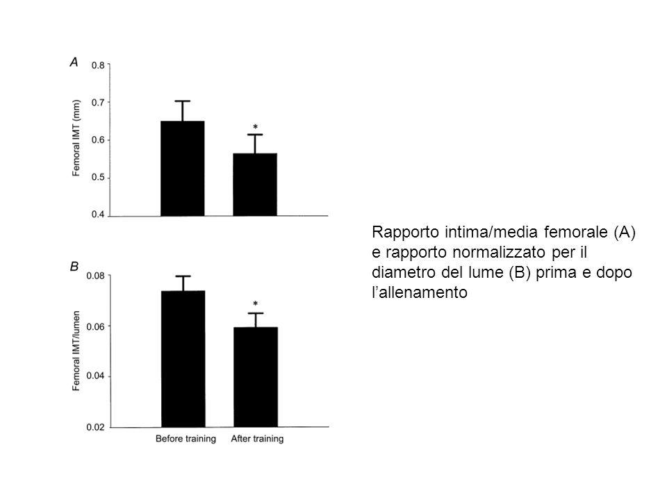 Rapporto intima/media femorale (A) e rapporto normalizzato per il diametro del lume (B) prima e dopo l'allenamento