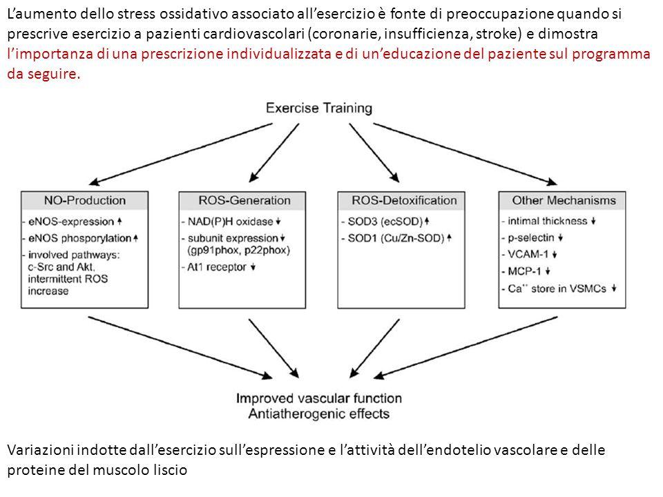 L'aumento dello stress ossidativo associato all'esercizio è fonte di preoccupazione quando si prescrive esercizio a pazienti cardiovascolari (coronari
