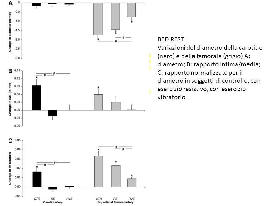 Il VEFG aumenta nel muscolo di ratto dopo contrazione o dopo un singolo episodio di corsa moderata su treadmill.